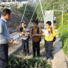 آموزش مراحل كاشت ونگهداري فضاي سبز به دانش آموزان دبستان شهيد رنجبر